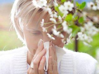 В борьбе с аллергическими заболеваниями